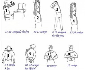 Beden Hareketleri, Jimnastik, Egzersiz Hareketleri