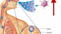 Çekinik Geçişli Resesif Genetik Bozukluklar