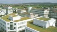 Yeşil çatı sistemleri ile çatılarınız şenlensin